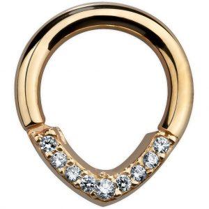 Segment Ring Piercing Alternative Jewelry Nipple Ring Septum Ring 14k Gold Body Jewelry