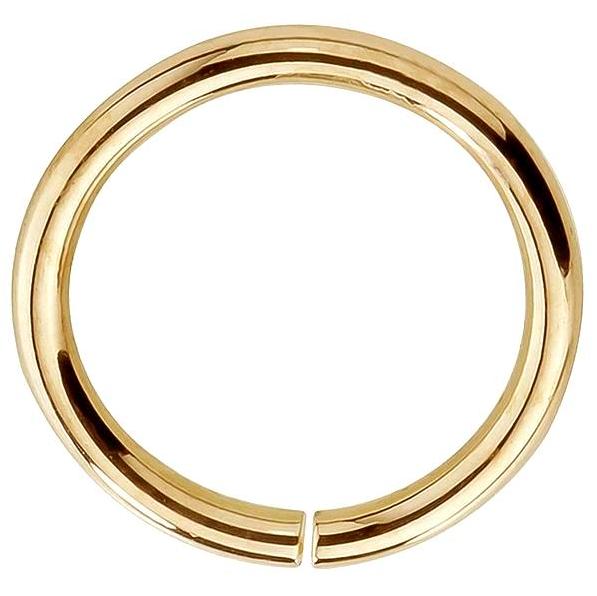 FreshTrends seamless hoop 14k gold