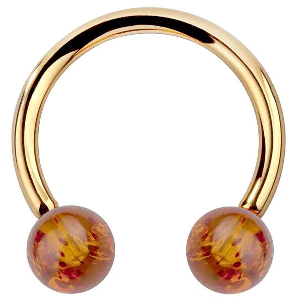 Baltic Amber 14K Gold Circular Barbell