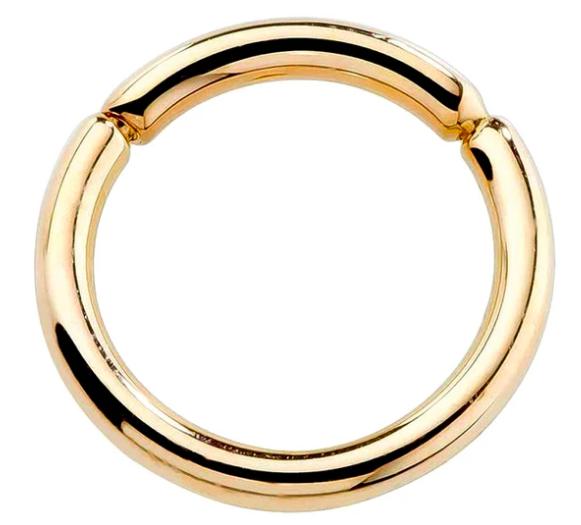 14K Gold Segment Ring